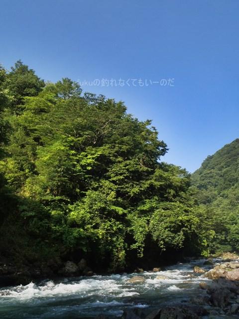 image_0518.JPG